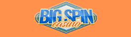 BigSpinCasino Logo Small