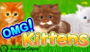 OMG Kittens - temp